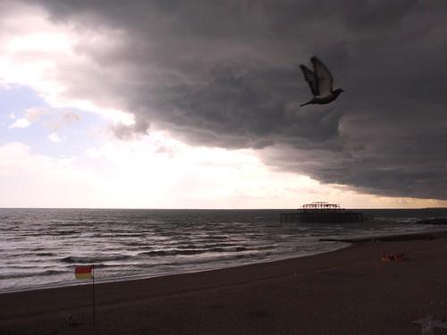 Brighton sea-front
