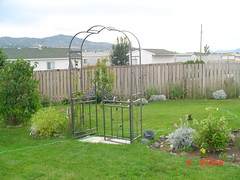 Garden view july 4,2005 013