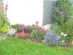 Garden view july 4,2005 002
