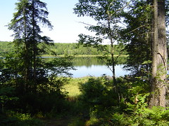 The Pond in Maine