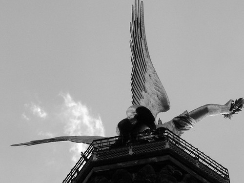 Wings of Desire | by siutung