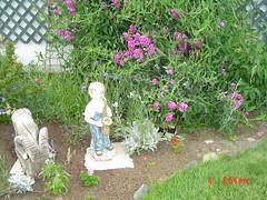 Garden view july 4,2005 011