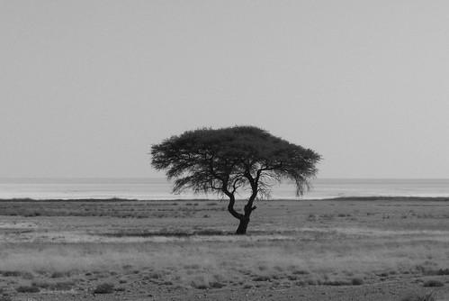 Namibia209