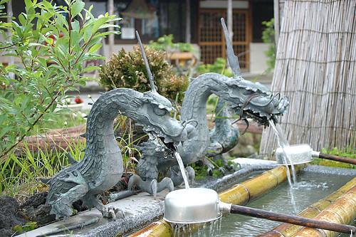 dragon3916