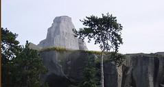 rocher zoo vincennes