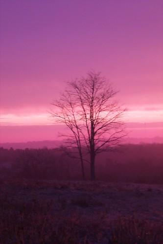 2005 sunrise lexington kentucky sidwelllane