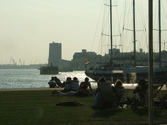 sunny evening in Rotterdam