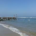 Strand bij Westhove
