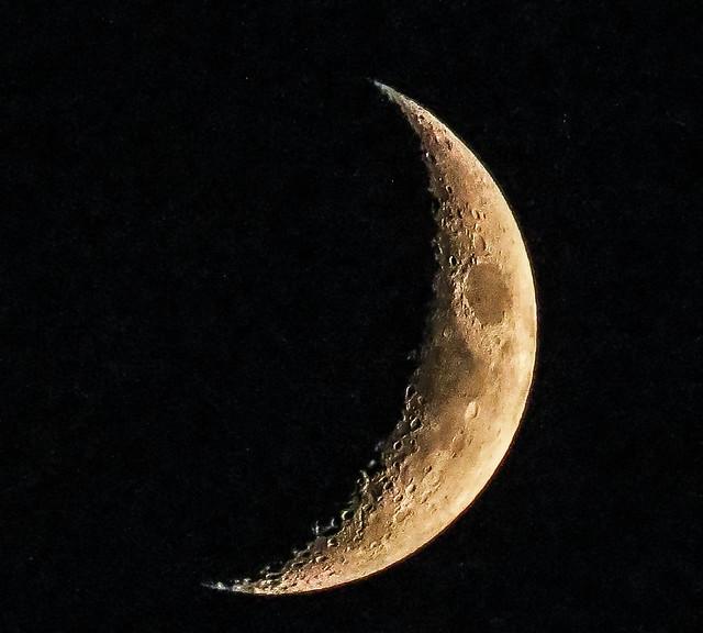 moon 9:30 portland Oregon.  missed Venus etc..