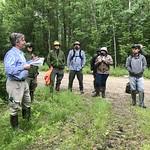 Brian Palik introducing the black ash silviculture sites