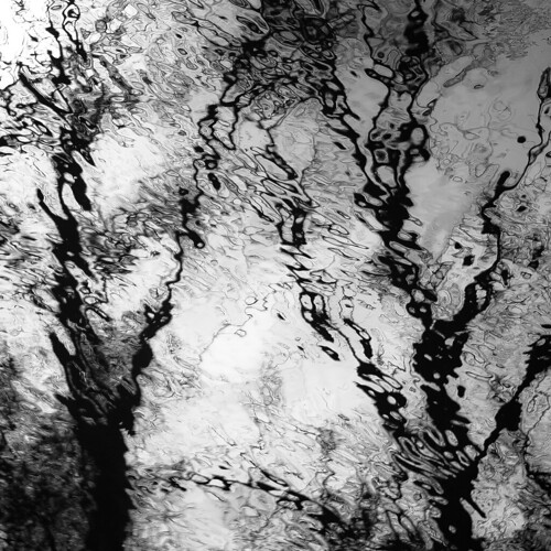 captaindanielwrightwoods d5000 desplainesriver dof nikon abstract blackwhite blackandwhite blur branches bw depthoffield distortion forest monochrome natural noahbw reflection ripples river silhouette spring square trees water woods