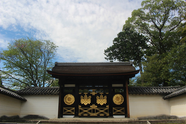 daigoji025
