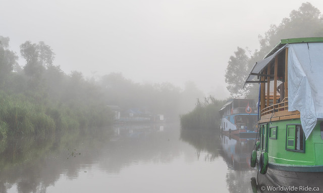 Borneo-28