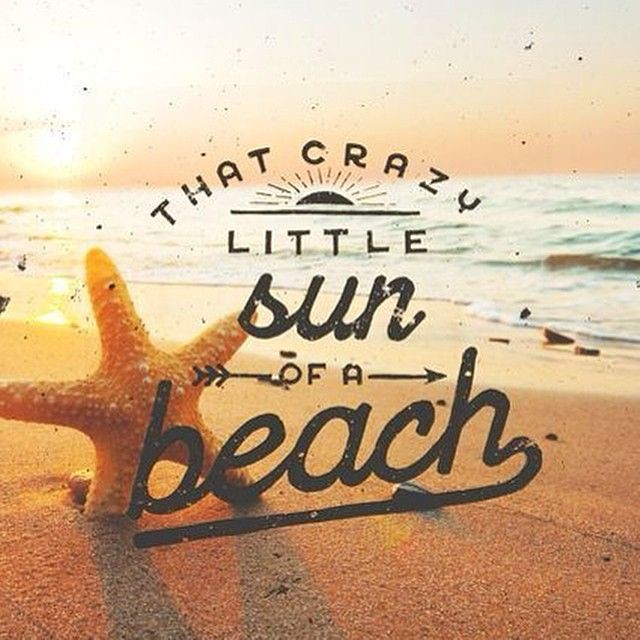 Summer Quotes : Image result for funny beach quotes | Flickr