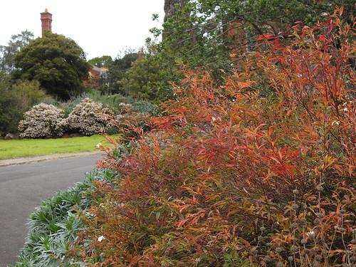 australia caloola garden sunbury victoria