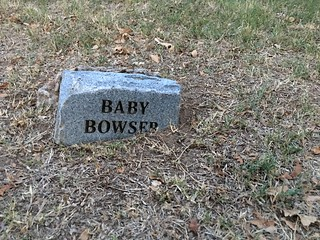 Poor Baby Bowser, rest in peace | by DanCentury