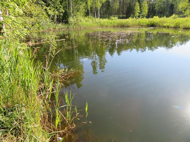 Vesiloo järv Viivikonna põlevkivikarjääris / Vesiloo lake made from closed surface mine trench in Estonia