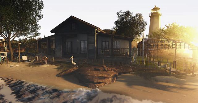 The Shore.....