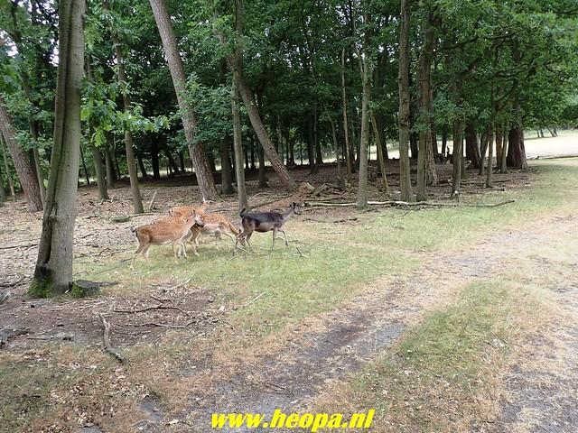 2018-07-11                  Apeldoorn        34  Km   (95)