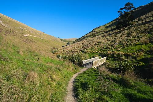 captain thomas walkway sumner bridge track hills blue sky grass sigma20exdg18 pentax pentaxk1