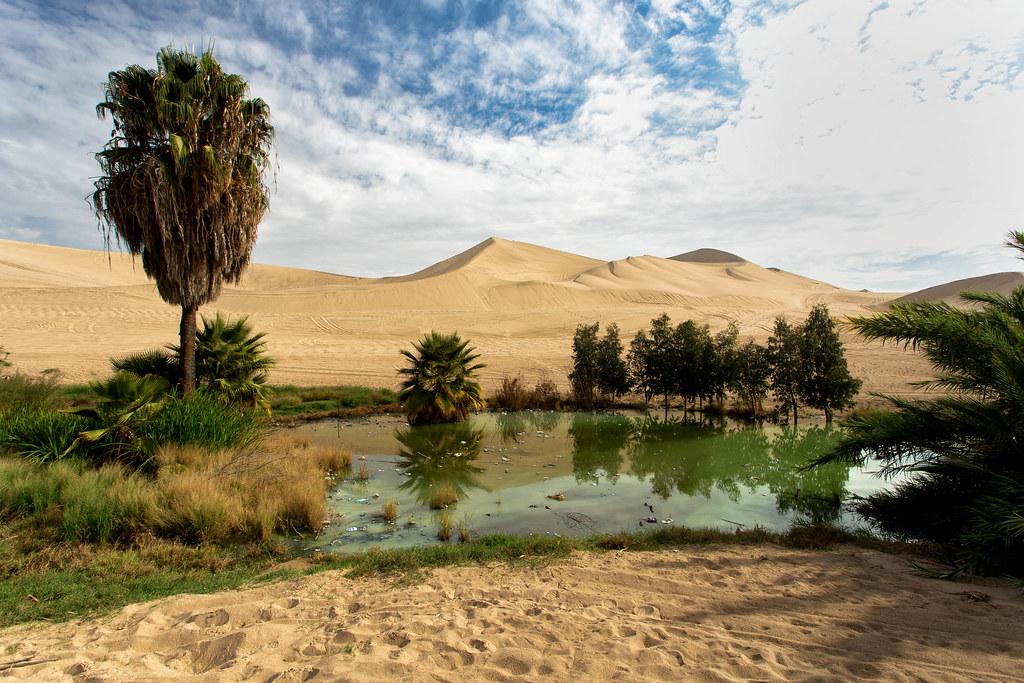 Peruvian Desert Oasis | The beautiful desert oasis of Huacac