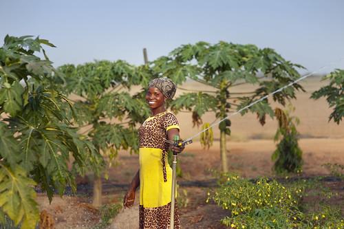 A woman farmer inspecting a sprinkler