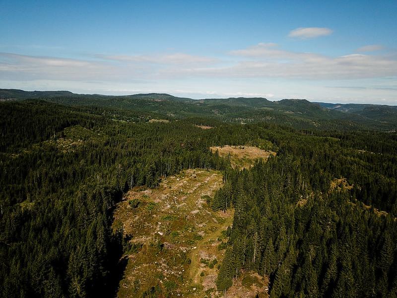 01-Utsikt mot Gampåsen fra Overskylda (drone)