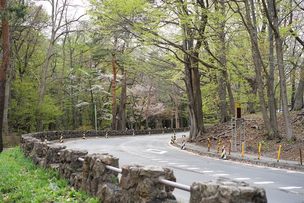 札幌円山公園_2
