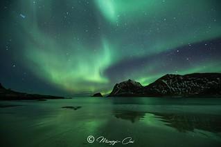 Amazing aurora in Lofoten💚