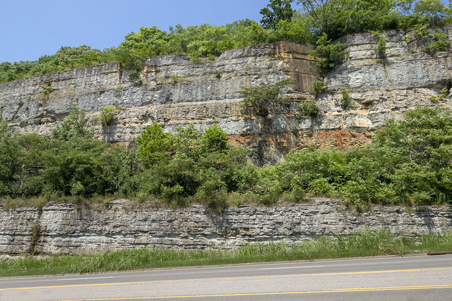 Fort Payne formation, Sequachie formation, Leipers-Catheys limestone, State Hwy 251, Davidson County, Tennessee 1
