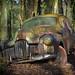 Bavaria Cars by -JPL-