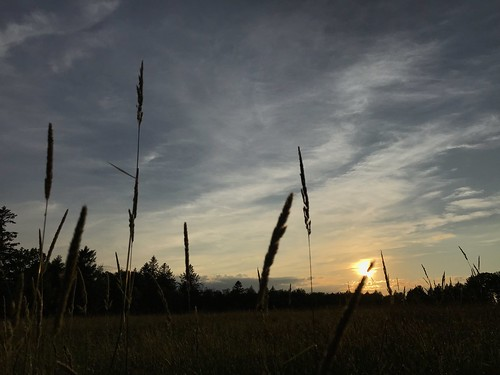 photostream summer firstdayofsummer iphone hay grass sky sunset sun fieldofgrass litchfield ct clouds