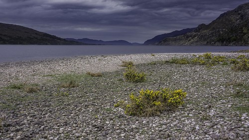 Shores of Loch Maree | by Scotland's Mountains