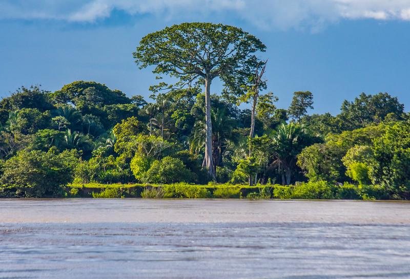 Confluencia Río Guaviare y Río Inírida