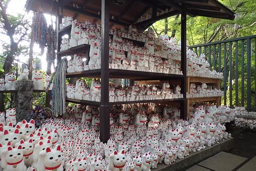 Gotokuji temple, Tokyo   by Tartanna