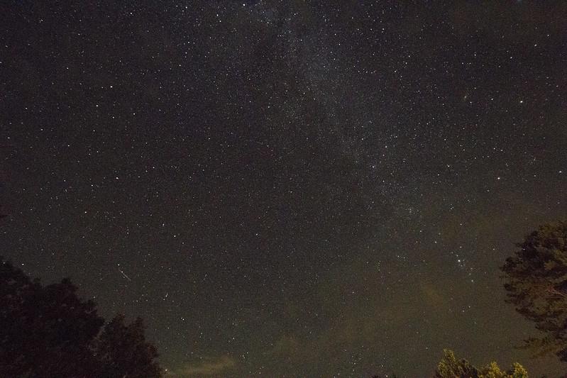 NH Perseid Meteor Shower_2