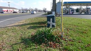 Roadside Memorial for Stephanie Will (3 of 3)