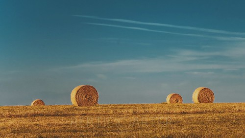 hay bales grass sky blue sussex lewes sussexdowns countryside landscape minimalism east
