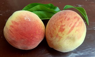 Peaches from the garden #gyo | by chalkahlom