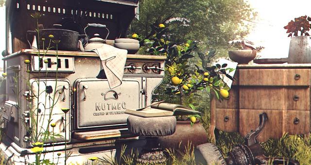 - Nutmeg- Kate's Kitchen Clutter