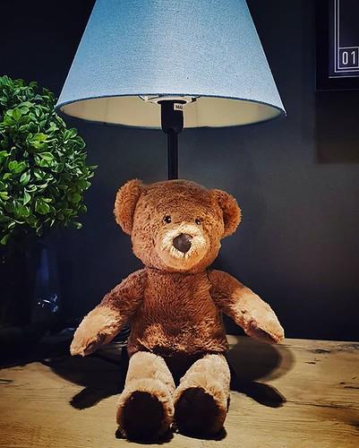Teddy bear #lamp #bear #teddy #plush #hotel #day #life #child #relax #cute #igers #igersmilano #portrait #kid #play #fun | by Mario De Carli