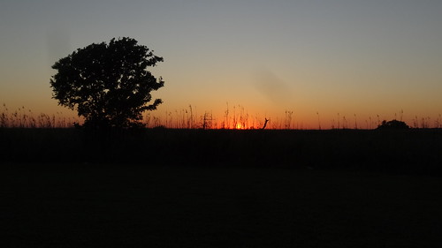 chfstew texas txchamberscounty sunset