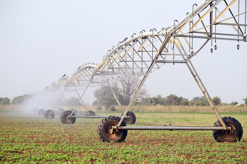 Centre pivot irrigation in the Northern Region of Yagaba.