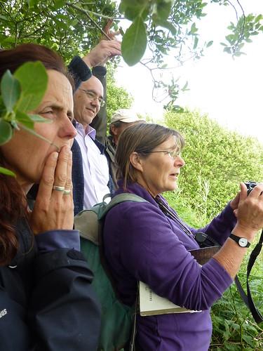 IRWC visits Turraun Wetlands, July 2013 | by Irish Ramsar Wetlands