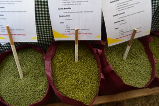 Green grams on display at a farmers marketing forum in Kitui county | by International Livestock Research Institute