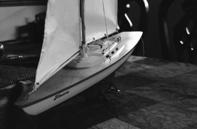 Albatros (3) (Nikon FE junio 18030)