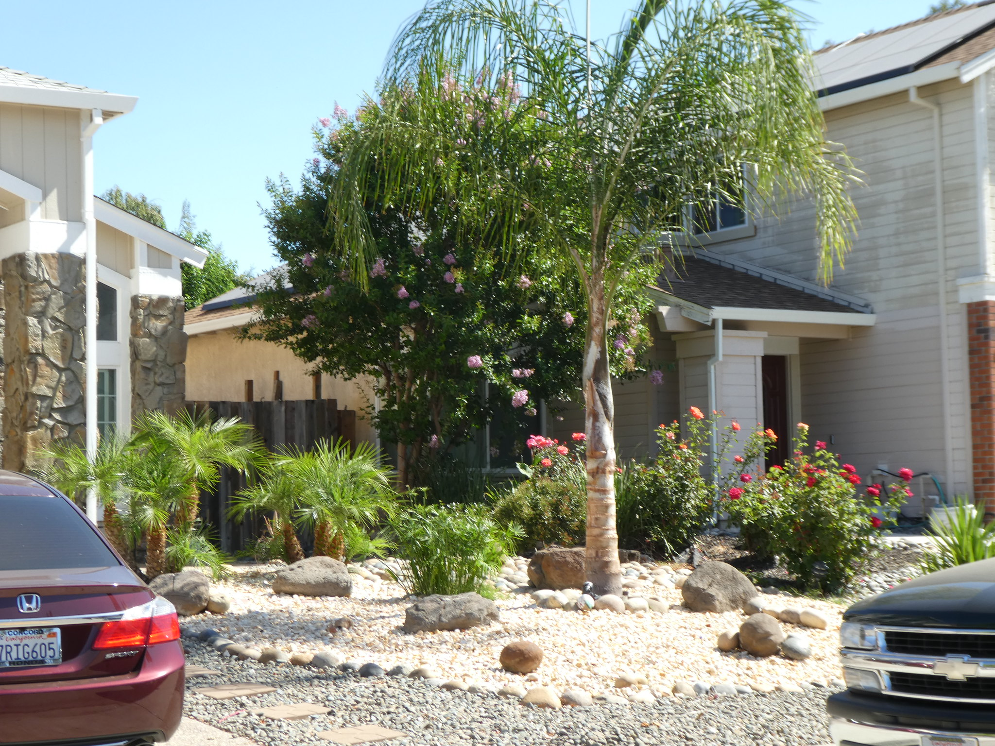 2018-06-29 - Well maintained Front yards