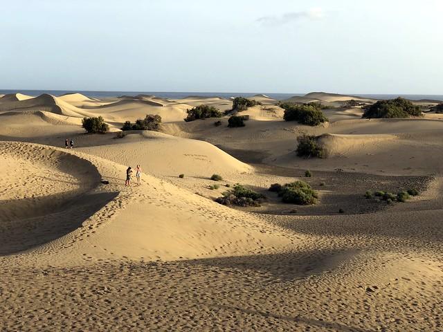 Gran Canaria - Maspalomas Dunes at sunset