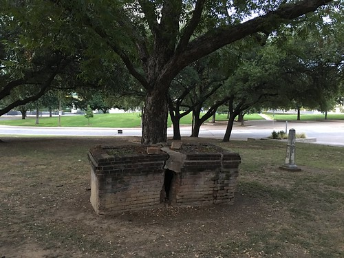 Dallas -- above ground grave split by tree | by DanCentury
