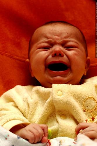 infant drama - _MG_9450   by sean dreilinger